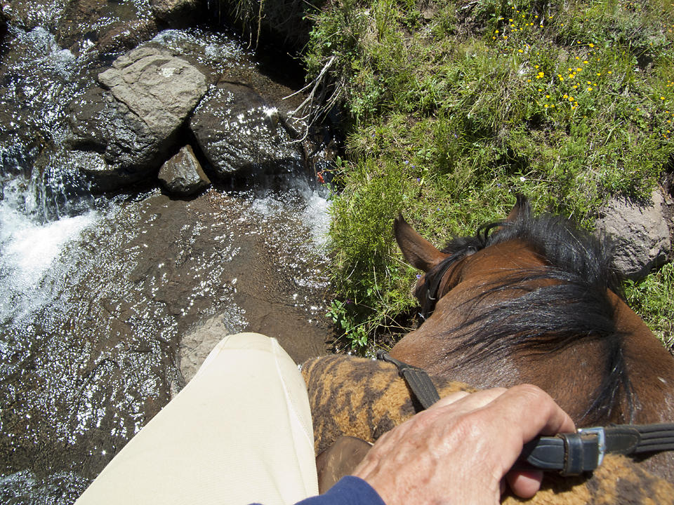 Water course refreshment for the pony